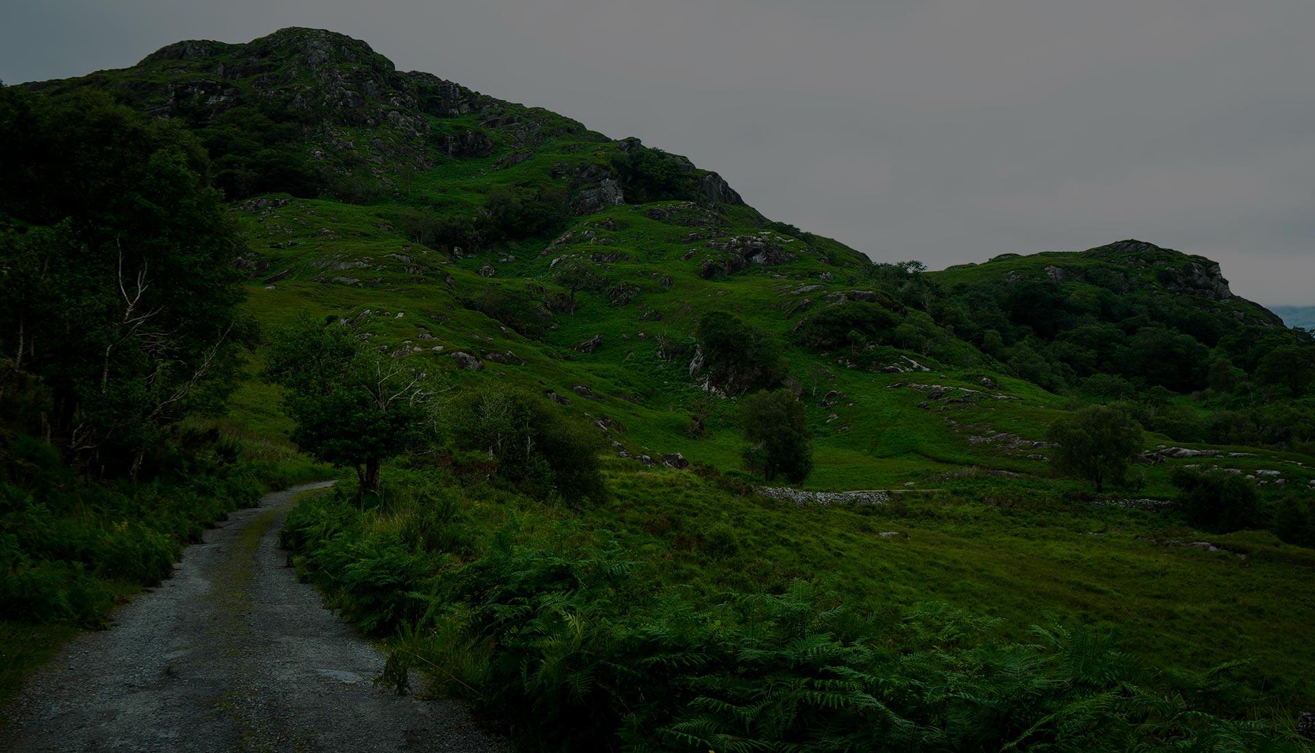 Photo de la nature irlandaise, nous découvrons aussi les paysages